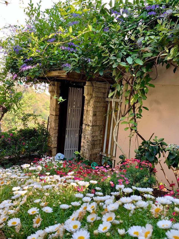 Rời Sài Gòn, cặp vợ chồng lên Đà Lạt xây ngôi nhà hướng mặt ra thung lũng, nhìn vườn hoa đào đẹp như cổ tích mà mê mệt - Ảnh 10.