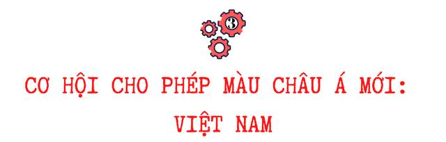 Những yếu tố thiên thời để Việt Nam trở thành phép màu châu Á mới  - Ảnh 5.
