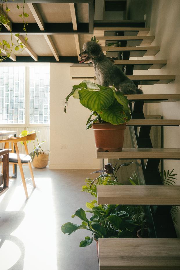 Chàng kiến trúc sư cải tạo căn hộ Pháp cổ, không gian tối giản nhưng sáng thoáng ngỡ ngàng - Ảnh 17.