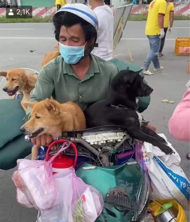 Đôi vợ chồng chở 15 chú chó theo về quê bị tiêu hủy: Thương chúng như con, làm được 250k thì dành 100k mua thức ăn cho chúng - Ảnh 2.
