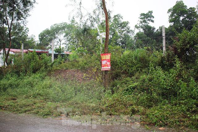 Đất Sóc Sơn được rao bán rầm rộ sau thông tin quy hoạch lên thành phố  - Ảnh 2.