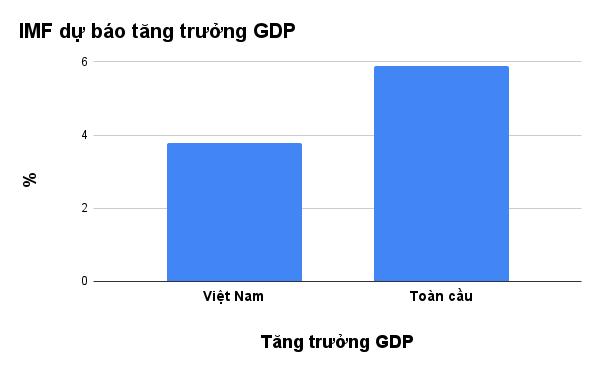 IMF hạ dự báo tăng trưởng GDP Việt Nam 2021 xuống còn 3,78%  - Ảnh 3.