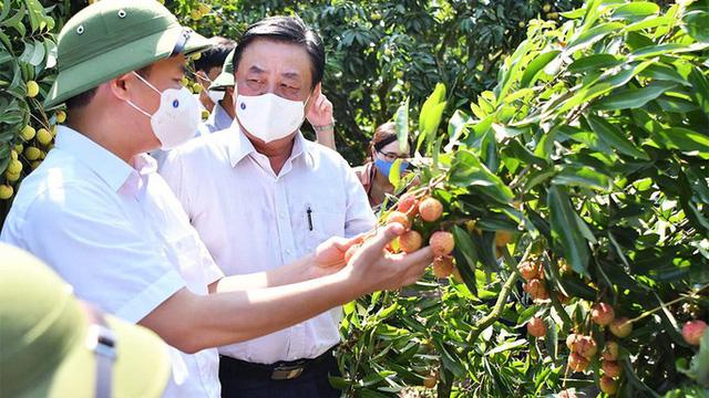 Bộ trưởng Lê Minh Hoan: Ngành nông nghiệp tiếp tục là trụ đỡ của nền kinh tế  - Ảnh 2.