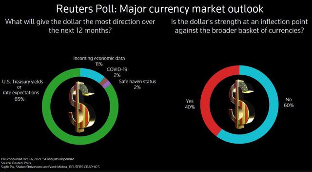 Ý kiến chiến lược gia tiền tệ: Đô la Mỹ chưa sẵn sàng thoái vị ngôi Vương trong cuộc đua tăng giá  - Ảnh 1.