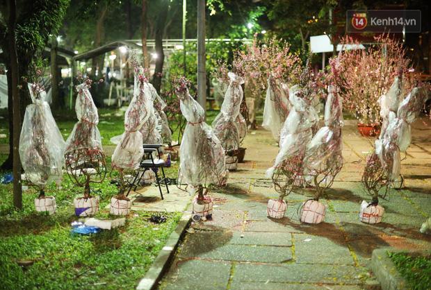 Xót xa cảnh tiểu thương căng lều bạt, vật vạ trắng đêm ở công viên canh hoa Tết: Ế ẩm nhưng cố bán hết ngày 30 để vớt vát - Ảnh 1.