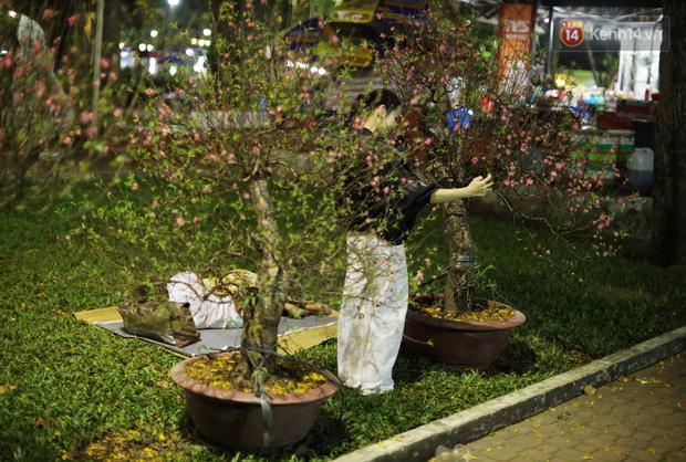 Xót xa cảnh tiểu thương căng lều bạt, vật vạ trắng đêm ở công viên canh hoa Tết: Ế ẩm nhưng cố bán hết ngày 30 để vớt vát - Ảnh 11.