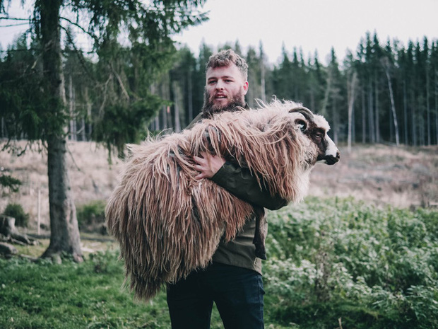 Đút túi ngon ơ gần 4 tỷ/năm với công việc đơn giản từ sáng đến chiều chỉ đi trực thăng và ôm cừu - Ảnh 3.