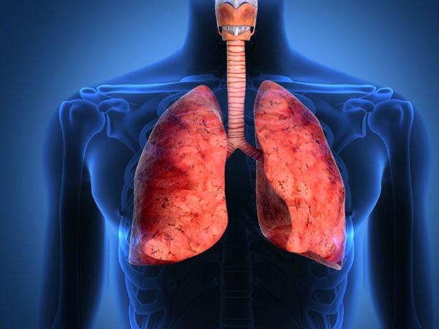 Phổi là chiếc máy hút bụi của cơ thể: BS mách bạn cách làm sạch mỗi ngày để không bị bệnh - Ảnh 1.