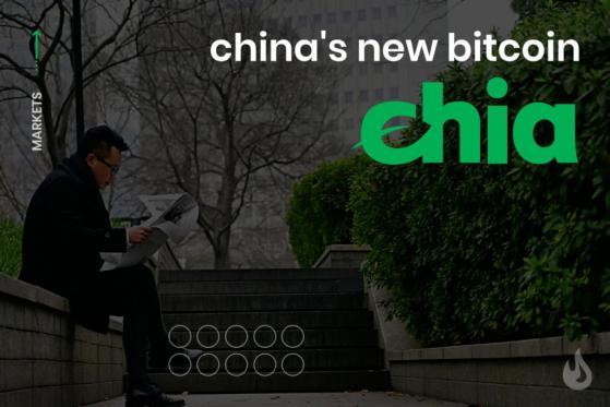 Bitcoin xanh Chia gây sốt ở Trung Quốc - Ảnh 1.