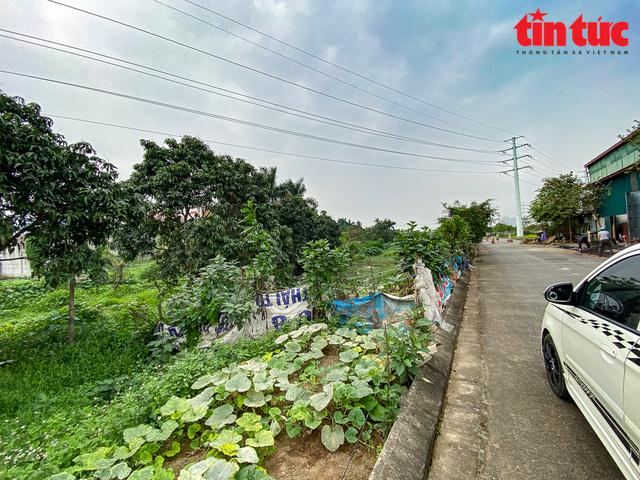 Cơn sốt đất tại Đông Anh, Hà Nội: Hỏa mù thông tin  - Ảnh 8.