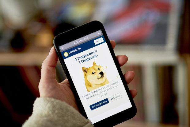 Financial Times: Dogecoin - Canh bạc hời hay cú lừa? - Ảnh 1.