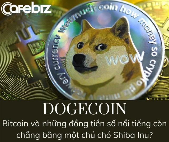 Financial Times: Dogecoin - Canh bạc hời hay cú lừa? - Ảnh 2.