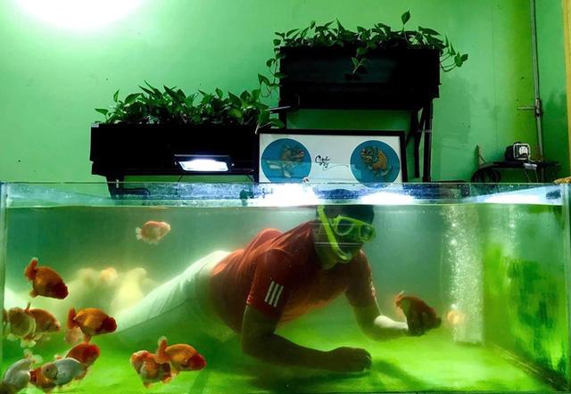 Nghỉ học từ lớp 11 để nuôi cá vàng trên sân thượng, chàng trai khoe doanh thu 100-200 triệu đồng/tháng  - Ảnh 3.