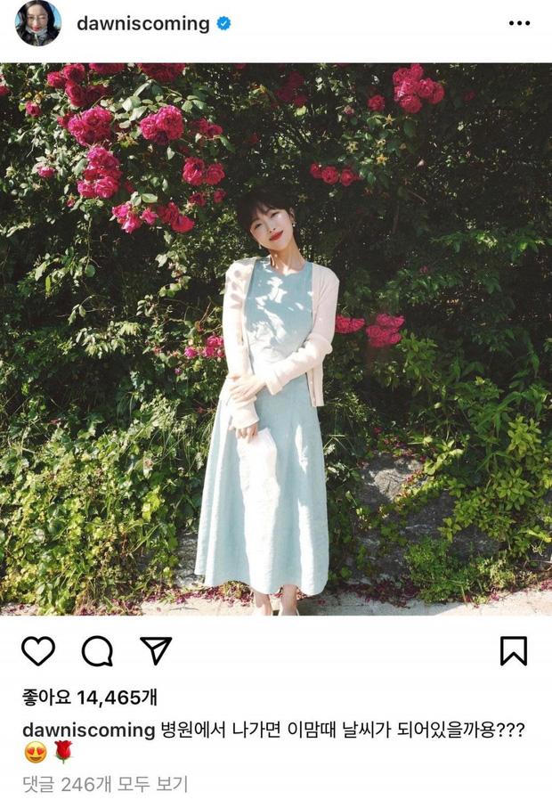 Beauty Blogger từng gây sốt với nhật ký nữ chiến binh chống ung thư đã qua đời sau 2 năm chống chọi bạo bệnh: Nụ cười của chị sẽ mãi ở đây! - Ảnh 7.