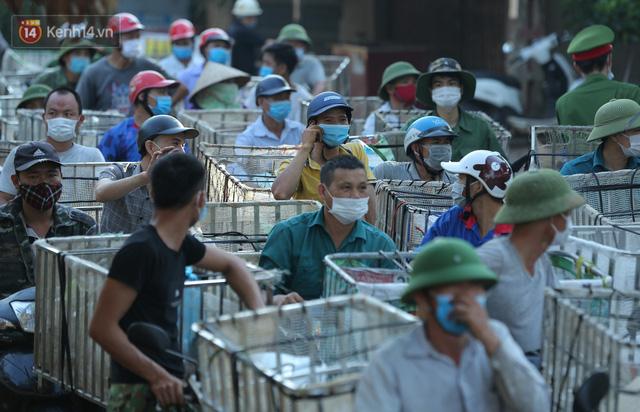Ảnh: Người dân Bắc Giang thắp đèn từ 2 giờ sáng, đi thu hoạch vải thiều xuyên đêm  - Ảnh 16.