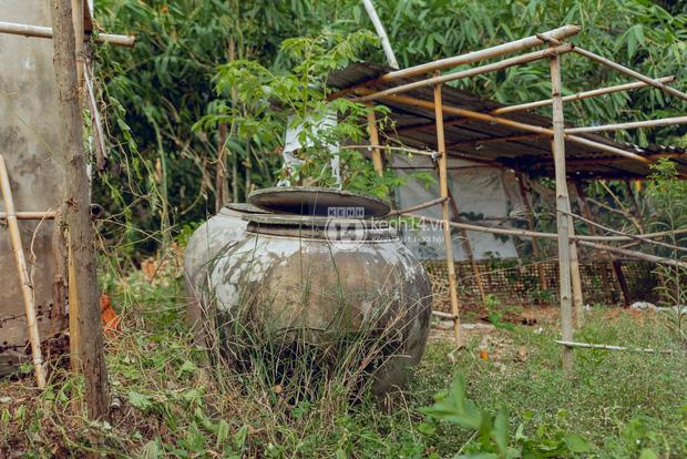 Trực tiếp đến Tiền Giang: Đau lòng khi thấy nhà Hồ Văn Cường bị bỏ hoang, hàng xóm kể lâu rồi không thấy bố mẹ ruột và Phi Nhung về thăm - Ảnh 11.
