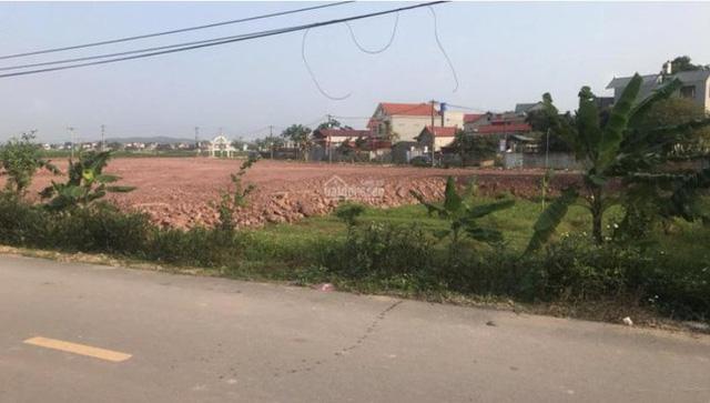 Hết cơn sốt, đất nền Bắc Giang, Bắc Ninh lao dốc khiến NĐT rậm rịch bán tháo  - Ảnh 2.