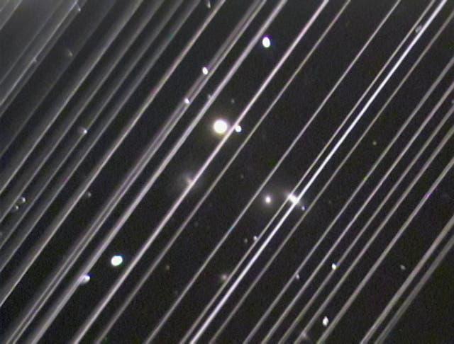 Dịch vụ Internet vệ tinh Starlink hiện đại của Elon Musk gặp đối thủ lớn: những cái cây - Ảnh 6.