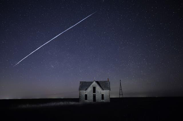 Dịch vụ Internet vệ tinh Starlink hiện đại của Elon Musk gặp đối thủ lớn: những cái cây - Ảnh 7.
