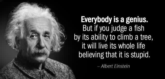 Sống trong đời phải có một tấm bằng: Sự nhầm lẫn giữa trí thông minh và giá trị con người - Ảnh 2.