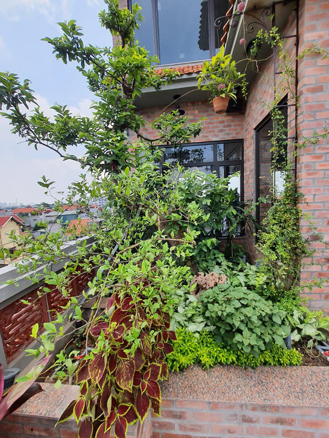 Nguyên một căn nhà cổ trăm tuổi trên tầng mái tạo nên ngôi nhà tân cổ giao duyên độc nhất vô nhị ở Việt Nam  - Ảnh 11.