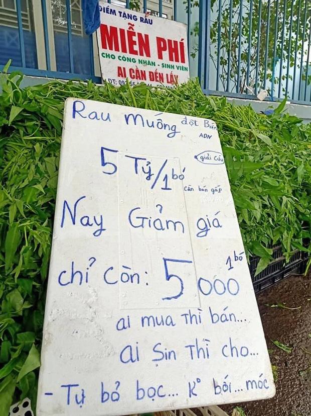 Anh bán rau khiến MXH dậy sóng: Rau muống đột biến 5 tỷ/bó nhưng sẵn sàng mang cho những người khó khăn - Ảnh 3.