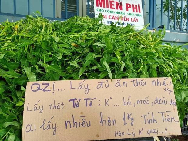 Anh bán rau khiến MXH dậy sóng: Rau muống đột biến 5 tỷ/bó nhưng sẵn sàng mang cho những người khó khăn - Ảnh 8.