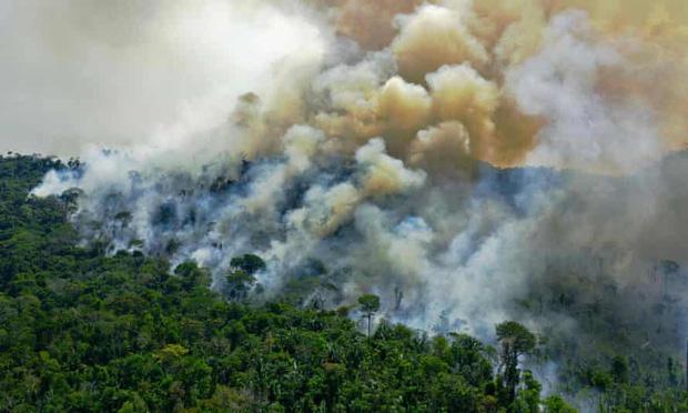 Tin rất buồn: Rừng Amazon chạm đến điểm cực hạn, đang phát thải CO2 còn nhiều hơn khả năng hấp thụ - Ảnh 2.