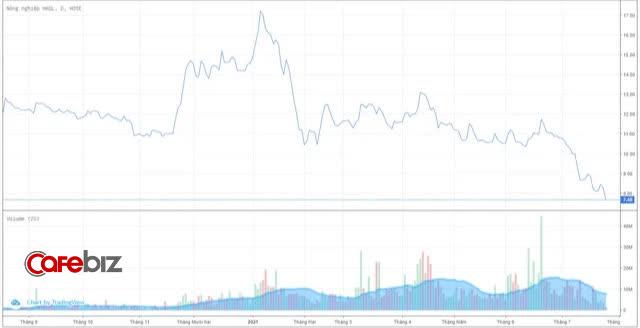 Cổ phiếu HAGL Agrico và HAGL cùng bị bán tháo sau tin Thaco dừng rót tiền - Ảnh 1.