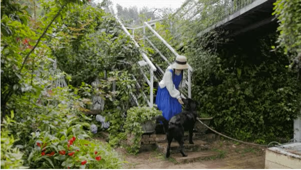 Người phụ nữ bỏ phố về quê để làm vườn hoa 1.500m2 tuyệt đẹp, ngày cao điểm hút 3.000 người đến thăm: Nửa đời người về sau, hãy dành cho chính mình  - Ảnh 17.