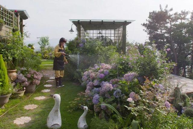 Người phụ nữ bỏ phố về quê để làm vườn hoa 1.500m2 tuyệt đẹp, ngày cao điểm hút 3.000 người đến thăm: Nửa đời người về sau, hãy dành cho chính mình  - Ảnh 3.