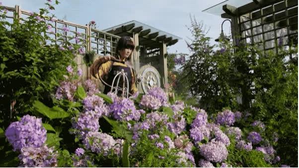 Người phụ nữ bỏ phố về quê để làm vườn hoa 1.500m2 tuyệt đẹp, ngày cao điểm hút 3.000 người đến thăm: Nửa đời người về sau, hãy dành cho chính mình  - Ảnh 23.