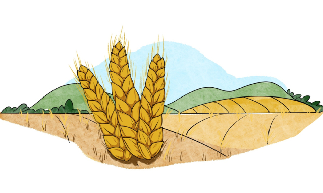 Mưa lũ tồi tệ tại Trung Quốc đe dọa nguồn cung nhôm, rau, ngô - Ảnh 2.