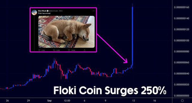 Khoe chó trên mạng, Elon Musk cũng có thể khiến một đồng tiền điện tử tăng giá 250% - Ảnh 2.