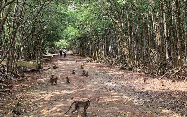 Hàng loạt thiên đường du lịch tại Việt Nam rục rịch mở cửa trở lại, người dân chờ thoát cảnh du lịch qua màn ảnh nhỏ  - Ảnh 5.