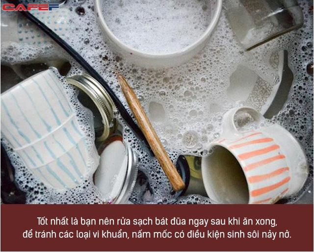 Rửa bát sai cách không khác gì nuôi cả ổ vi khuẩn trong nhà, ăn vào miệng là tự đầu độc bản thân: Chị em cần nhớ kỹ 5 sai lầm sau  - Ảnh 2.