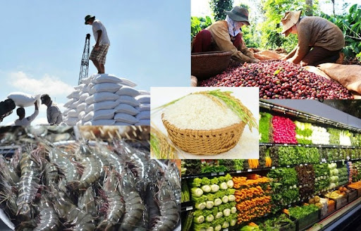IFC: 5 lĩnh vực sẽ tạo ra khác biệt cho tăng trưởng kinh tế Việt Nam nếu có sự xuất hiện của doanh nghiệp tư nhân  - Ảnh 3.
