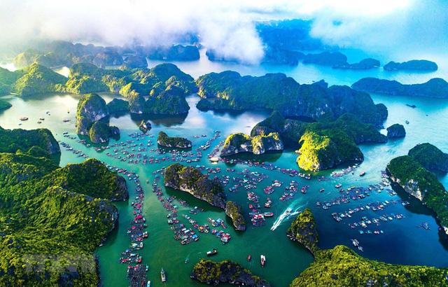 IFC: 5 lĩnh vực sẽ tạo ra khác biệt cho tăng trưởng kinh tế Việt Nam nếu có sự xuất hiện của doanh nghiệp tư nhân  - Ảnh 5.