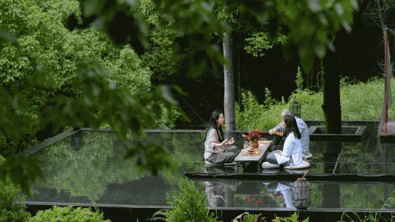 Ngôi nhà vườn khiến ai cũng trầm trồ của nữ biên tập viên rời phố, cùng chồng và bố mẹ về quê sống cuộc đời an nhàn  - Ảnh 31.