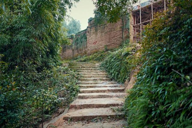Ngôi nhà vườn khiến ai cũng trầm trồ của nữ biên tập viên rời phố, cùng chồng và bố mẹ về quê sống cuộc đời an nhàn  - Ảnh 5.