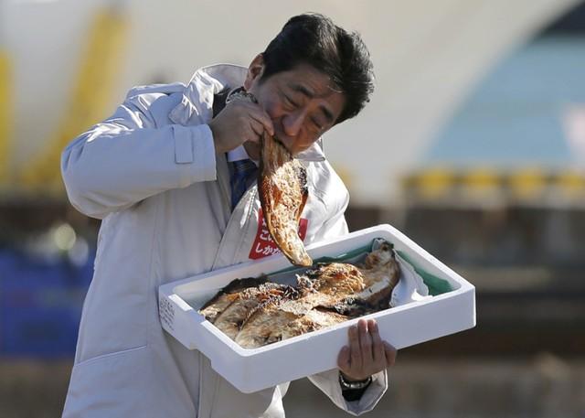 Bức ảnh thủ tướng Shinzo Abe ăn cá nướng ở cảng cá Soma.