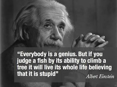 Tất cả mọi người trên thế giới đều thông minh, nhưng nếu bạn đánh giá sự thông minh của 1 con cá qua khả năng leo cây của nó thì con cá đó cả đời nghĩ rằng mình là con cá ngốc nghếch