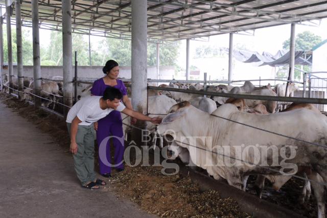 Trần Hữu Nghĩa (áo trắng) đang giới thiệu về trang trại chăn nuôi bò của mình