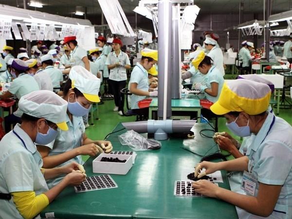 Lương tối thiểu ở Việt Nam: Méo mó vì phải gánh nhiều trọng trách - Ảnh 1.