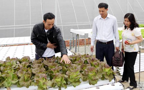 Lâm Đồng sẽ trở thành Trung tâm nông nghiệp giá trị cao của Đông Nam Á - Ảnh 1.