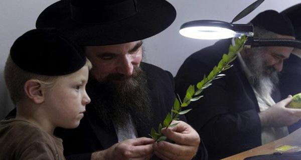 Câu nói của người Do Thái khiến nhiều người Việt giật mình: Cuộc sống là giáo án hay nhất, cha mẹ là người thầy tốt nhất! - Ảnh 1.