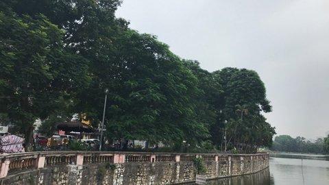 Hà Nội chặt, chuyển 130 cây xanh trên đường Kim Mã  - Ảnh 1.