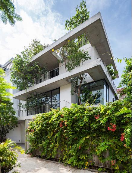 Báo Mỹ ngỡ ngàng với ngôi nhà tràn ngập cây xanh tuyệt đẹp giữa lòng Sài Gòn - ảnh 3