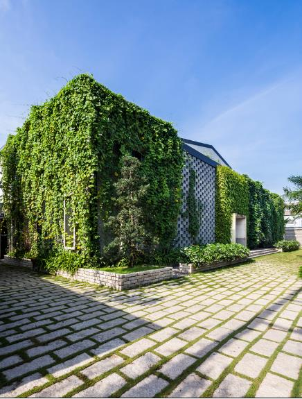 Một xưởng may tại KCN ở Sài Gòn được thiết kế phủ kín cây xanh mướt xuất hiện trên báo ngoại - Ảnh 1.