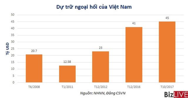 Dự trữ ngoại hối của Việt Nam vọt lên 45 tỷ USD - Ảnh 1.